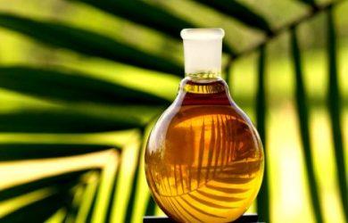 olejek-palmowy.jpg